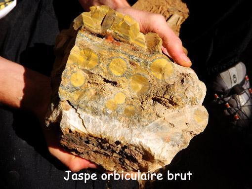 jaspe orbiculaire brut
