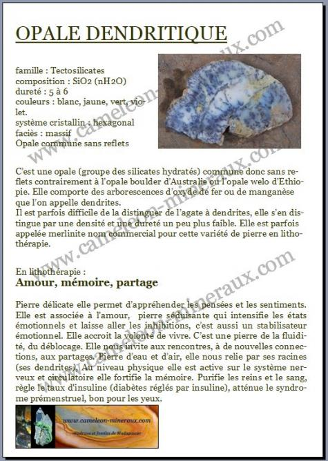 Opale a dendrites